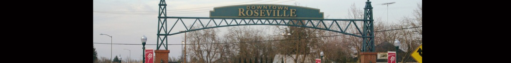 Roseville Bail Bonds-Headr